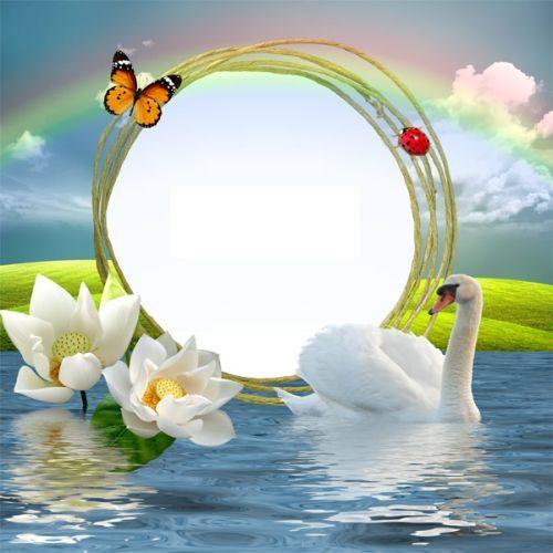 цветочная рамка для фотошоп природа