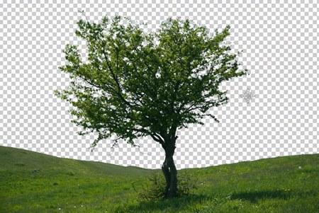 Как поменять фон на фотографии
