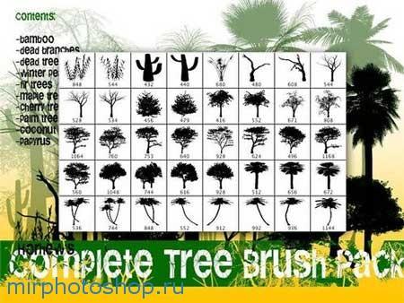 Кисти для фотошопа деревья