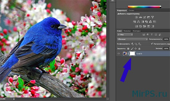 Бесплатный урок по фотошопу, который покажет Вам, как использовать слой-маску в программе фотошоп